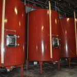 Les réservoirs de vinification / The vinification tanks